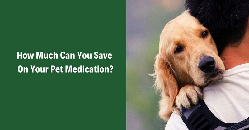 How Much Can You Save On Your Pet Medication_